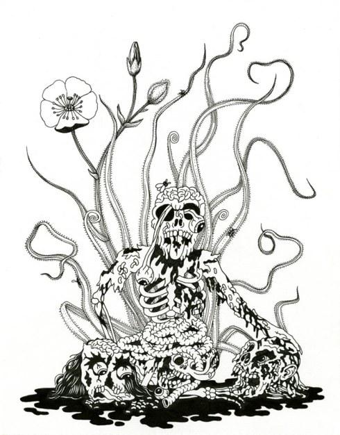 carnivorous.skull